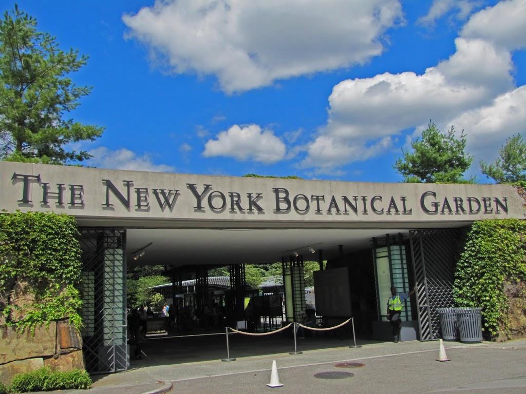 A Visit To The New York Botanical Garden The Obsessive Neurotic Gardener