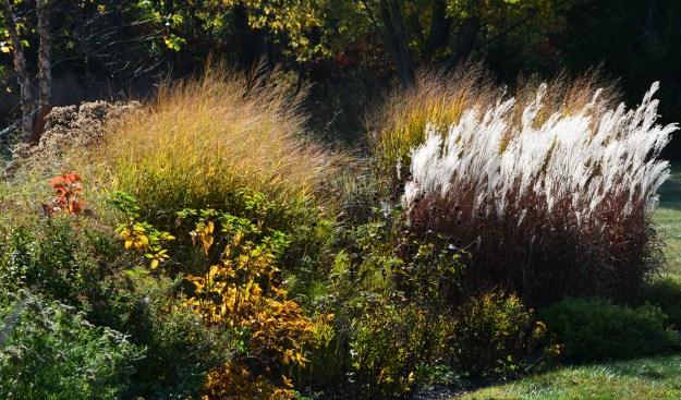 fall-garden-3