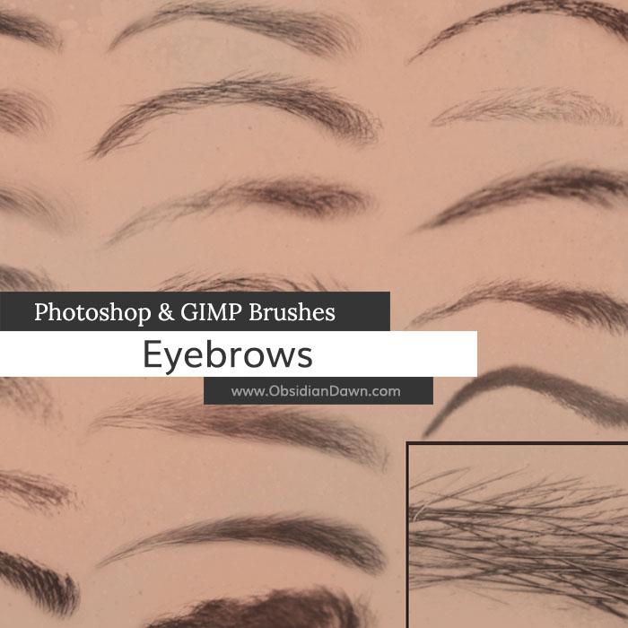 Eyebrows Photoshop  GIMP Brushes Obsidian Dawn