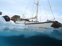 australis split Antarctica