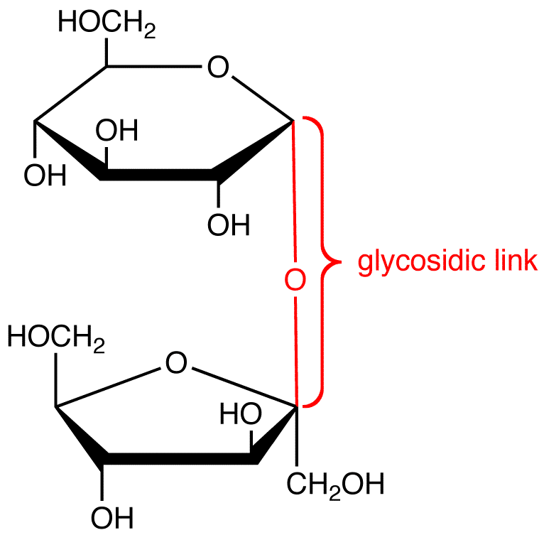electrical wiring diagram toyota trundra
