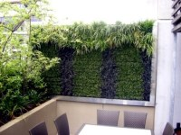 Balcony Vertical greening and effective and inexpensive ...