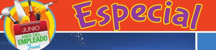 ESPECIAL de ofertas Ferreteria Freund Junio 2014 banner