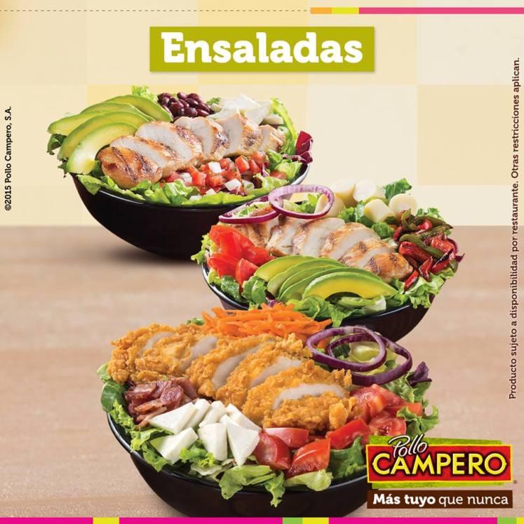deliciosas y nutritivas ensaladas POLLO CMAPERO