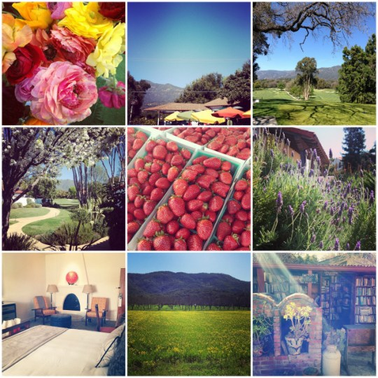 instagrams of the week: Ojai edition