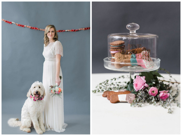 Pet Friendly Wedding Inspiration | Lemon & Lime Events | Meghan Boyer Photography