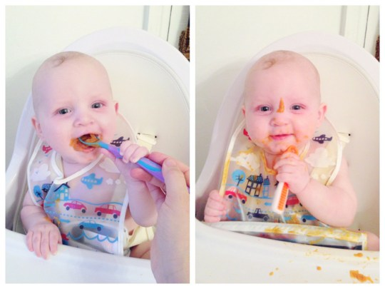 baby's first foods   Oh Lovely Day