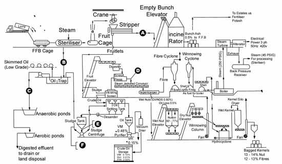 schematic process flow diagram of a palm oil mill