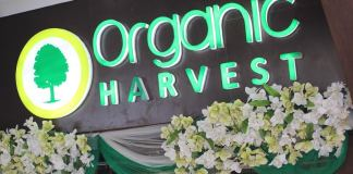 organic harvest natural skin care