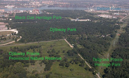 Ojibway Prairie Complex - Parks  Recreation - City of Windsor