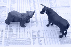 bull and bear on stock report