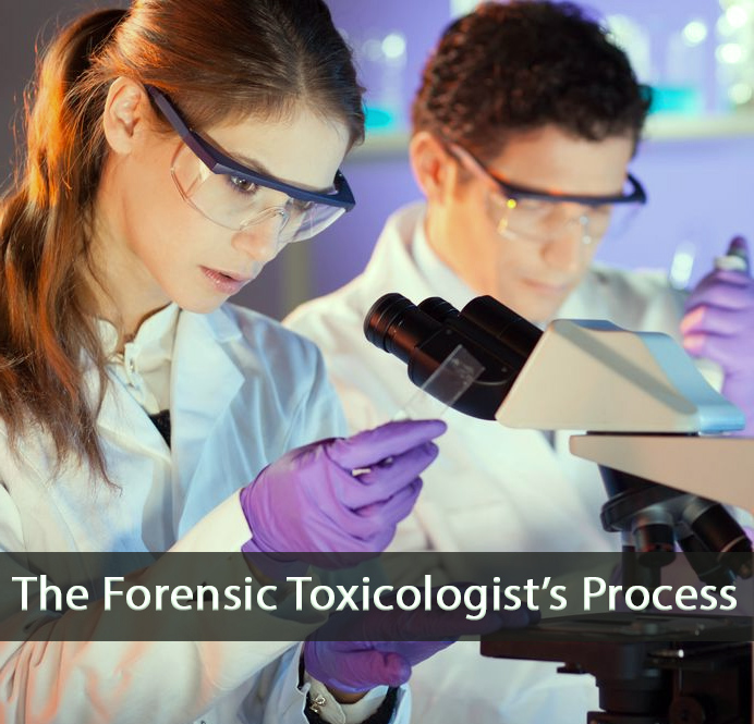 The Forensic Toxicologist\u0027s Process