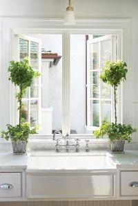 7 Best Houseplants for the Kitchen - Restoration & Design ...