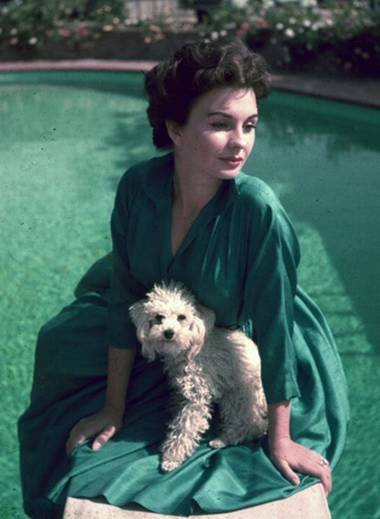 img_jean-simmons