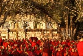 Buddha's Path