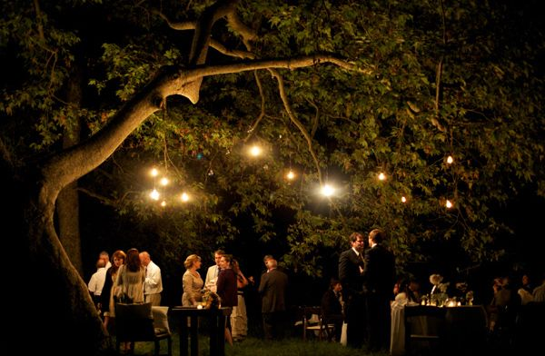 Fall String Lights Wallpaper Weddings Twinkling Wedding Lights Once Wed