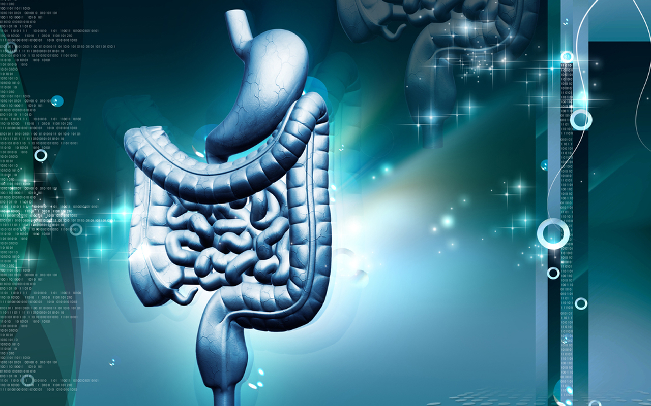 Cell Wallpaper Hd The Emerging Role Of Immunotherapy In Gastric And