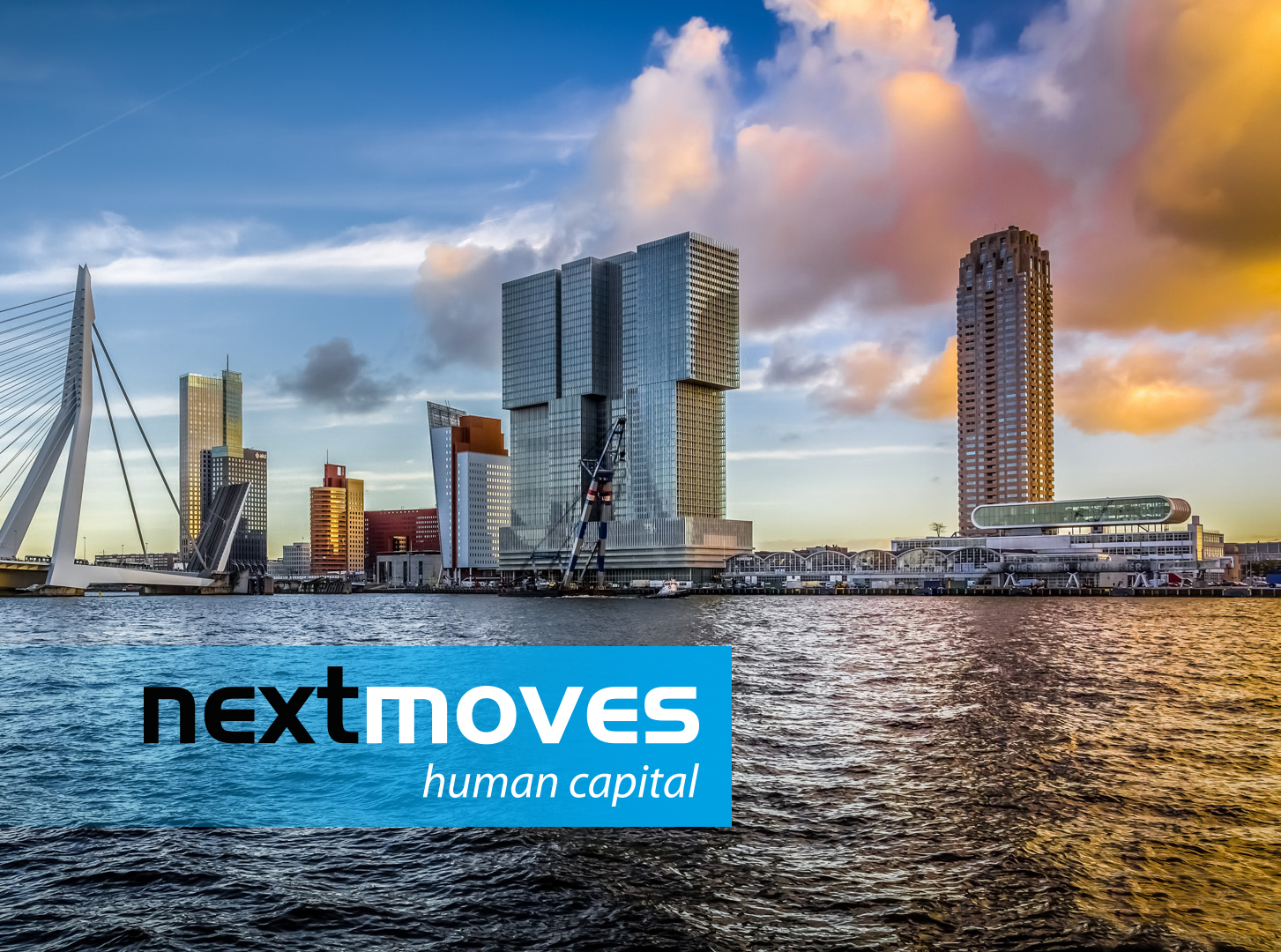 Website Nextmoves BV