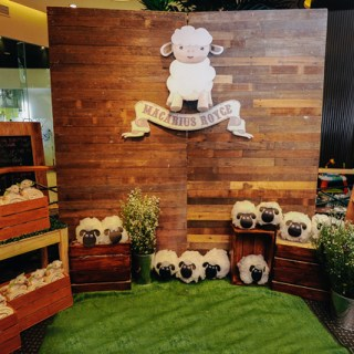 Little Little Sheep Themed Party - 01