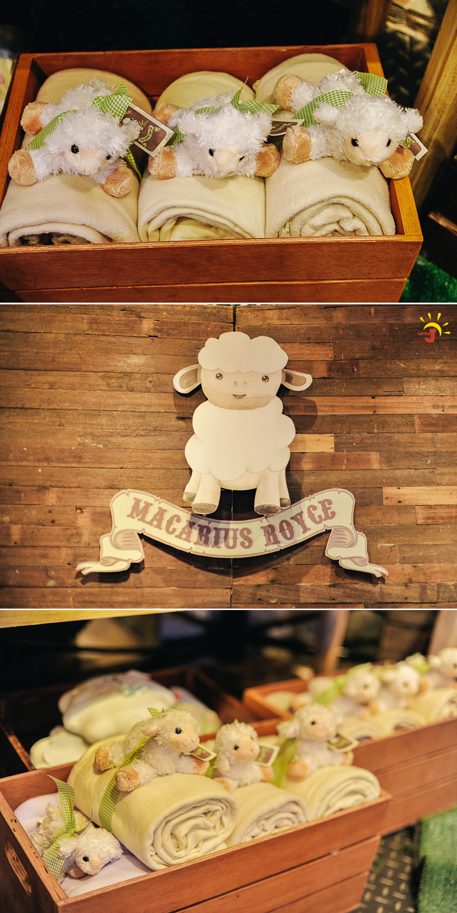 Little Little Sheep Themed Party - 14