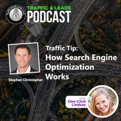 Traffic and Leads Podcast: How Search Engine Optimization Works