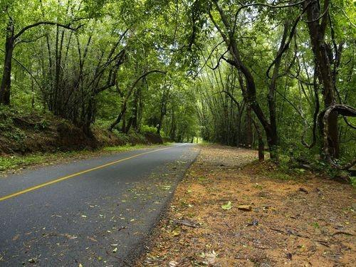Athirapally Falls Wallpapers Athirappilly Travel Guide Tourist Places Athirappilly