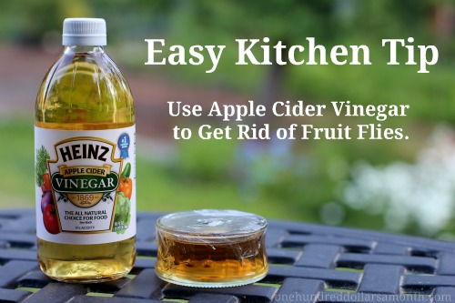 easy kitchen tips how to get rid of fruit flies. Black Bedroom Furniture Sets. Home Design Ideas