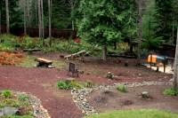 Landscaping Ideas Wooded Backyard PDF