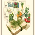 Giveaway – Enter to Win a Botanical Interests Seed Collection