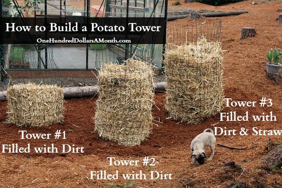 DIY How to build a potato tower