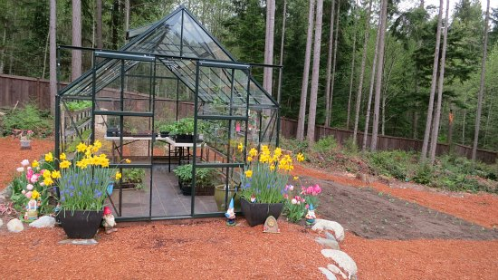 Greenhouse Gardening, Grow food in a greenhouse