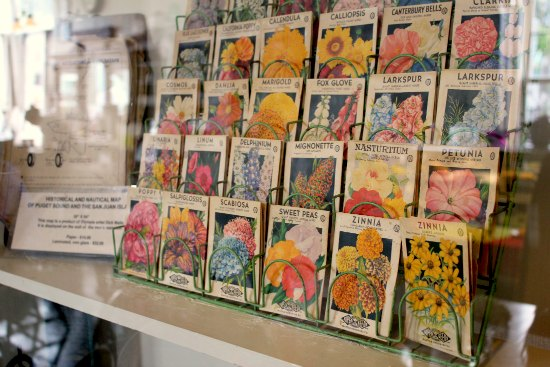 old seed packets