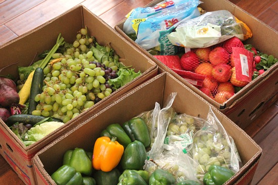 dumpster-diving-free-produce