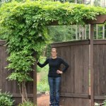 How to Plant, Grow and Care for Wisteria