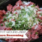 Crock Pot Ground Beef w/ Taco Seasoning