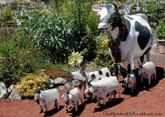 garden cows