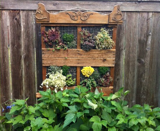 Wood pallet garden ideas with pictures for Pallet garden ideas