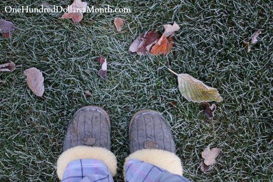 grey ugg slippers