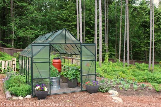 greenhouse gardening in Seattle
