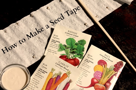 how-to-make-a-seed-tape
