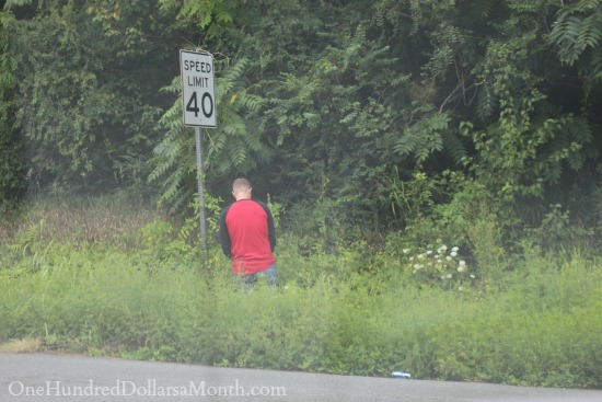 stop to pee alongside the road