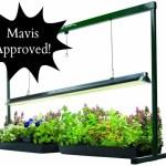 Giveaway: Hydrofarm JumpStart T5 Grow Light System