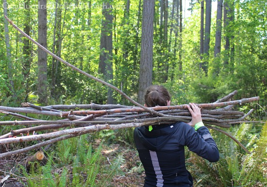 sticks for building a teepee