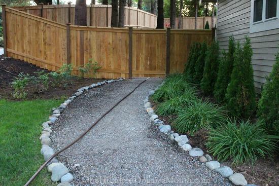 walking path cedar fence