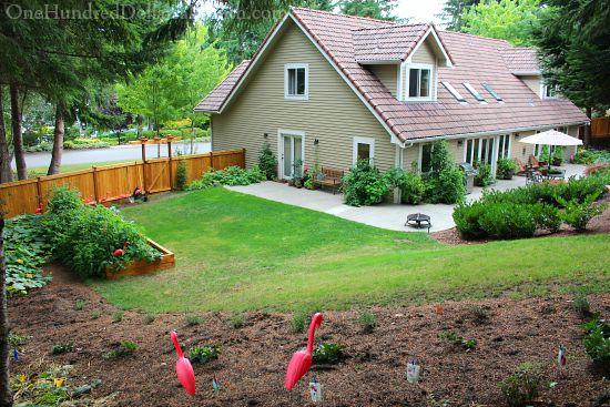 backyard kitchen garden