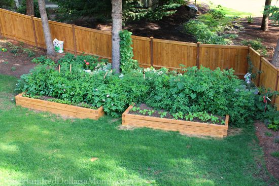 raised-garden-beds2