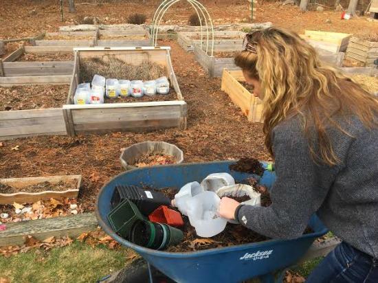 heather working in garden east coast