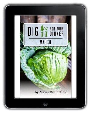 march ebook