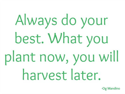 quotes - always do your best