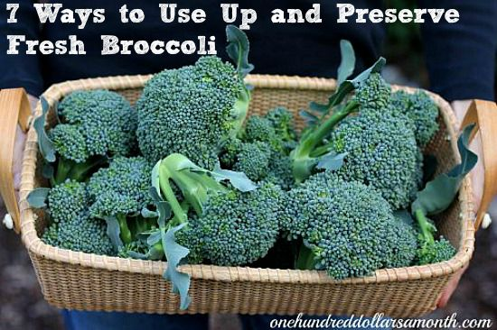 7 Ways to Use Up and Preserve Fresh Broccoli